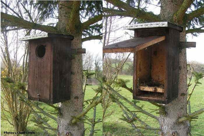 nichoirs pour huppe et pigeon colombin. Black Bedroom Furniture Sets. Home Design Ideas